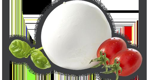 mozzarella-png-1